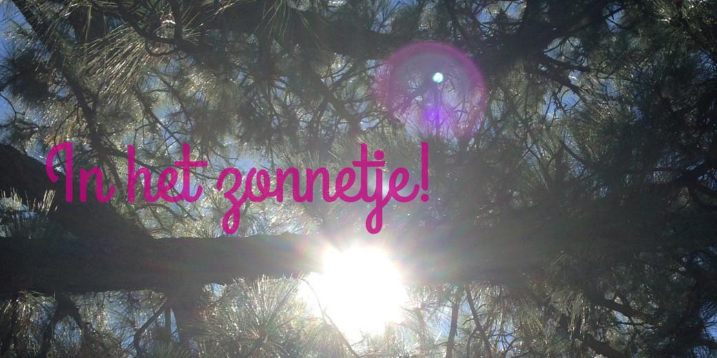 In het zonnetje!