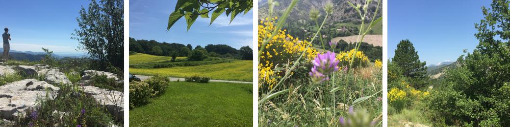 Vakantiefoto's 2018 Provence + Vence: mooie landschappen